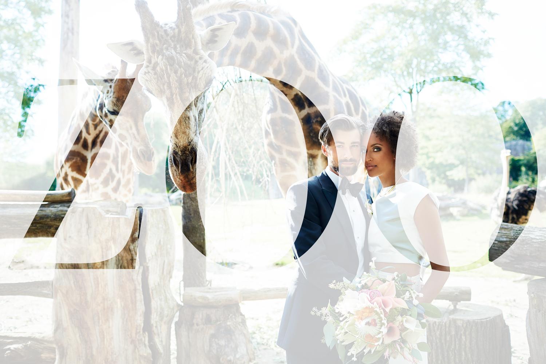 festlicher Hochzeitsplaner Leipzig Sachsen