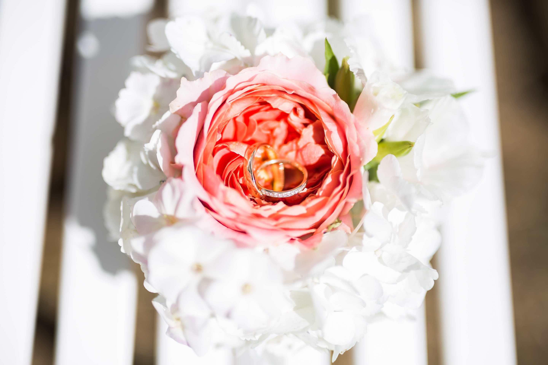 die Eheringe in Blume inszeniert