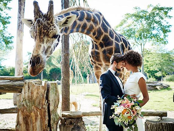 Heiraten im Zoo Leipzig